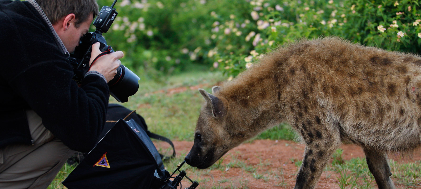 Student photographs hyena
