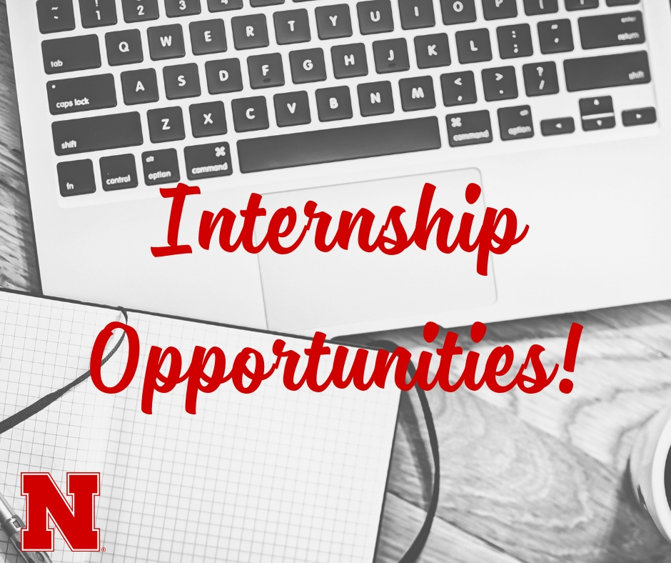 Internship opportunities graphic